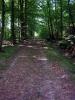 Zdjęcie: Trasa dla miłosników przyrody
